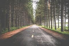 road-690138_960_720.jpg